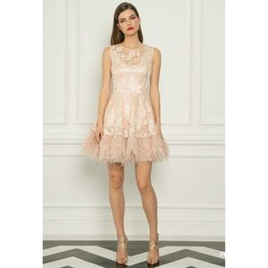 Blush floral embroidered sequin feather dress XS